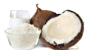 ¿Cómo reemplazar la harina de coco?