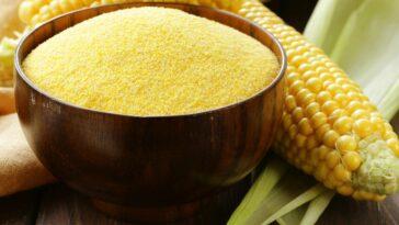 Cómo reemplazar la harina de maiz