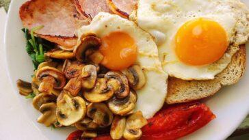 Almuerzo con setas: cómo prepararlo