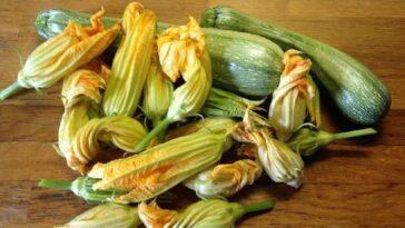 Flores de calabaza gratinadas: una receta sabrosa y rústica
