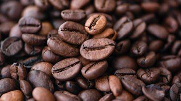 risotto de cafe